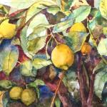 lemons in brown and blue sm